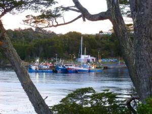 119-Puerto-Toro-300x225 dans 03 - Patagonie