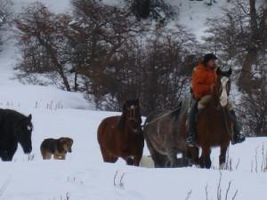 166-Jose-et-ses-chevaux-sont-de-retour-300x225