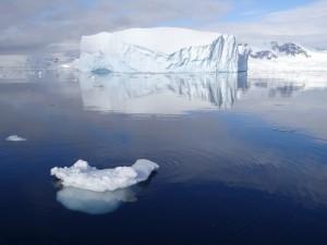 Tabulaire : d'où vient il ? - Charlotte Bay - Antarctique