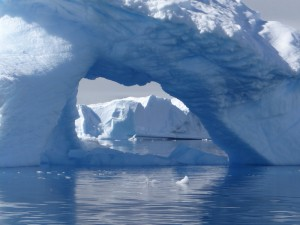 Gardien de Portal Point - Charlotte Bay - Péninsule Antarctique
