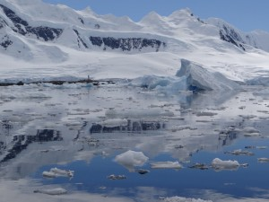 A Dorian Bay - Neumayer Channel - WIencke Island - Antarctique