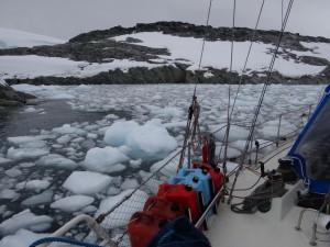 Mouillés au milieu des growlers - Watkins Islands - Antarctique