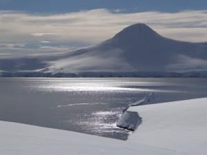 Y a t il autre chose que de la neige ? - Anvers Island depuis Dorian Bay - Antarctique