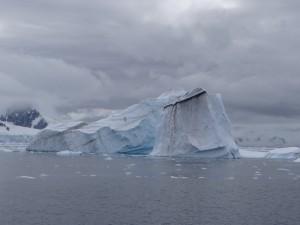 Une année sale ? - Leith Cove - Péninsule Antarctique