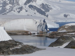 Glacier sur Galindez Island - Argentine Islands - Antarctique