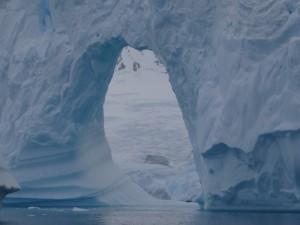 Arche - détail - cimetière d'icebergs - Hovgaard Island - Antarctique