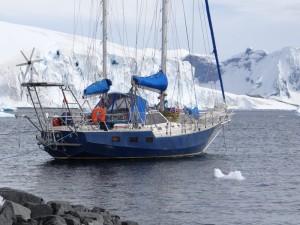 Autre mouillage de Cuverville Island, Antarctique
