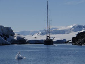 Hortense à Mutton Cove, Antarctique