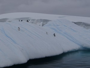 A l'entrée de Melchior, Antarctique