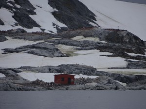 Port Circoncision, Petermann Island, Antarctique